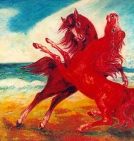 Cavalli del vento